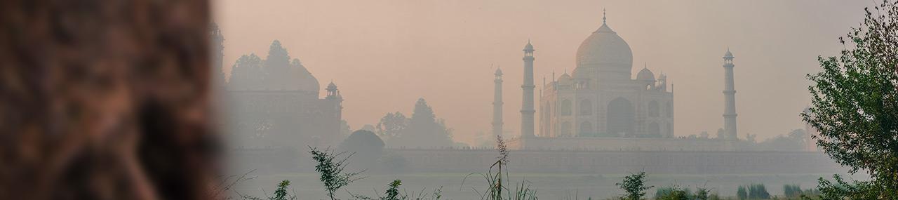 L'Inde entre impératifs économiques et durabilité