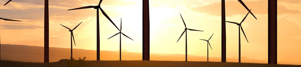 Internal Carbon Pricing in de praktijk