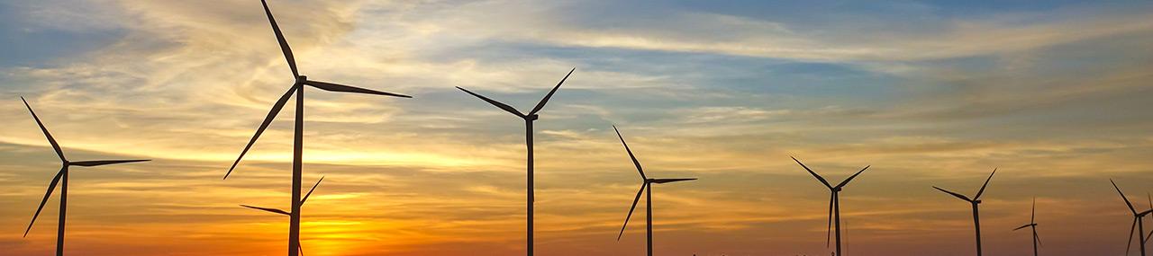 Obligations vertes: un marché en croissance rapide