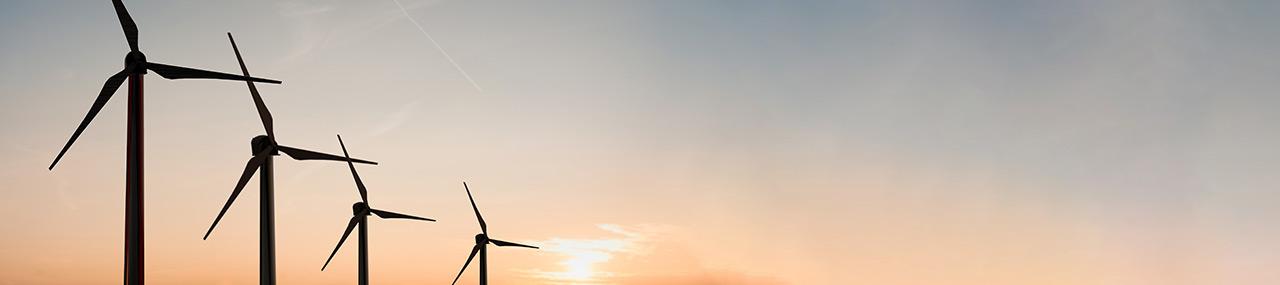 Een 'groene lijst' voor duurzame financiering